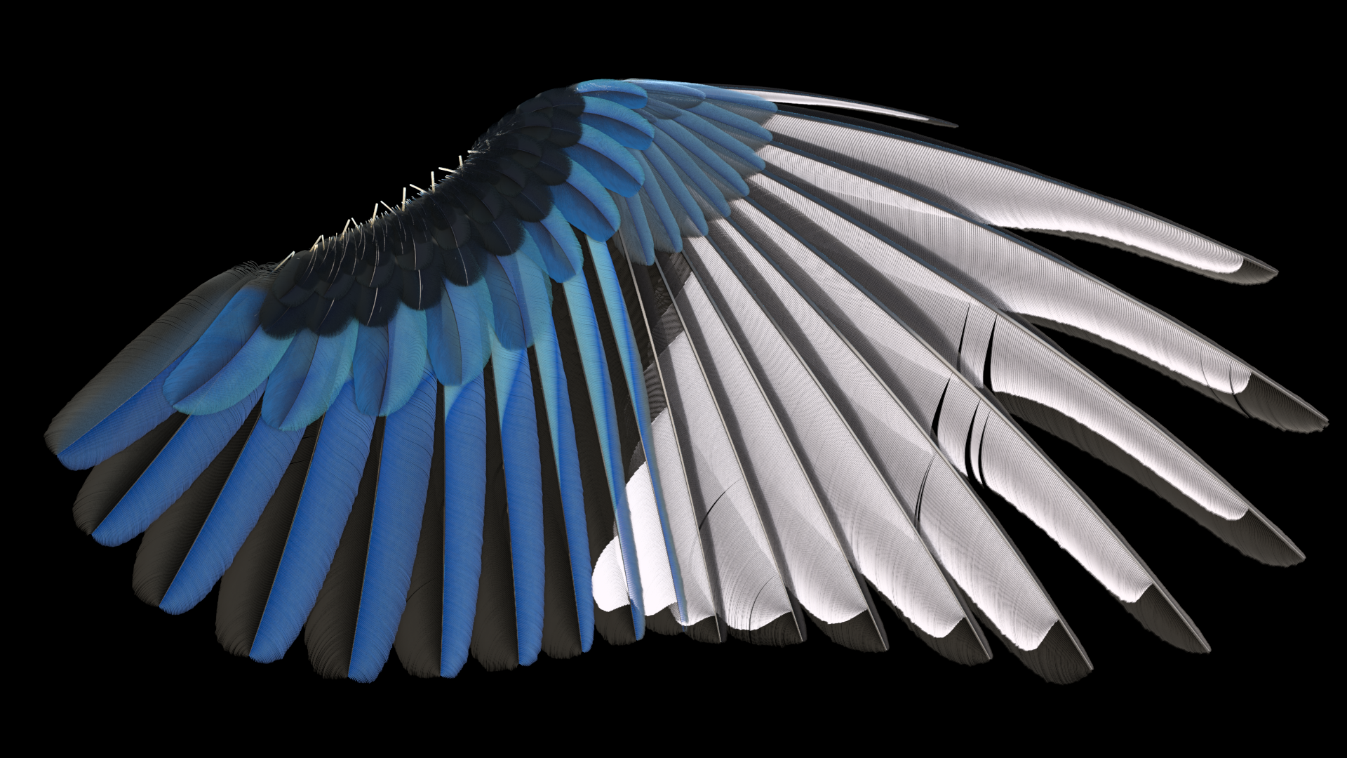 feather tools sidefx